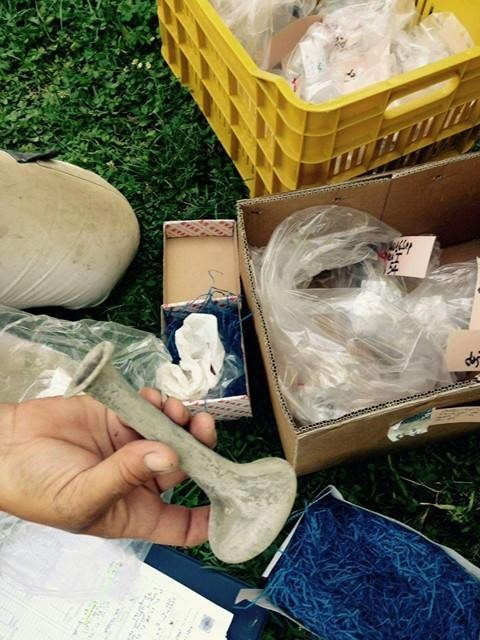 Le nuove scoperte nell'area archeologica