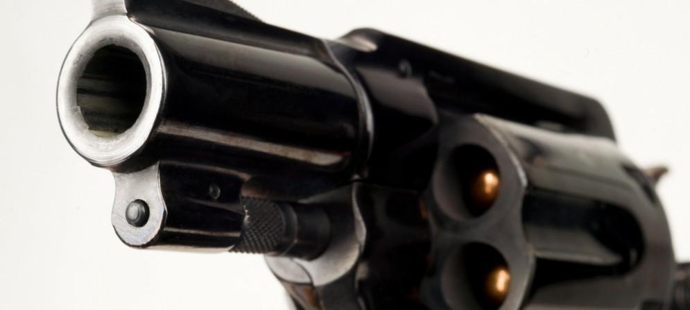 Quasi 10 mila armi da fuoco nell'Isontino