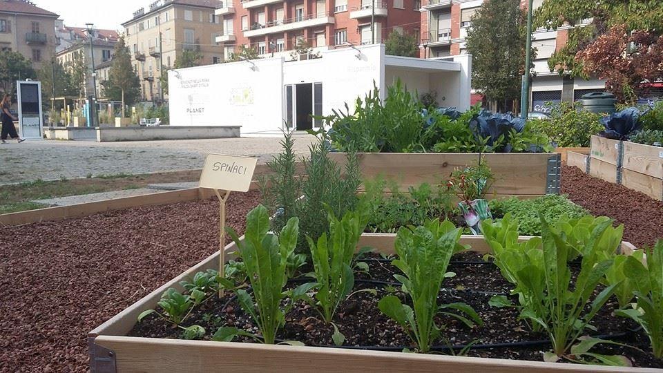 Tecnologia sì, ma anche ecologia al centro della nuova piazza Risorgimento