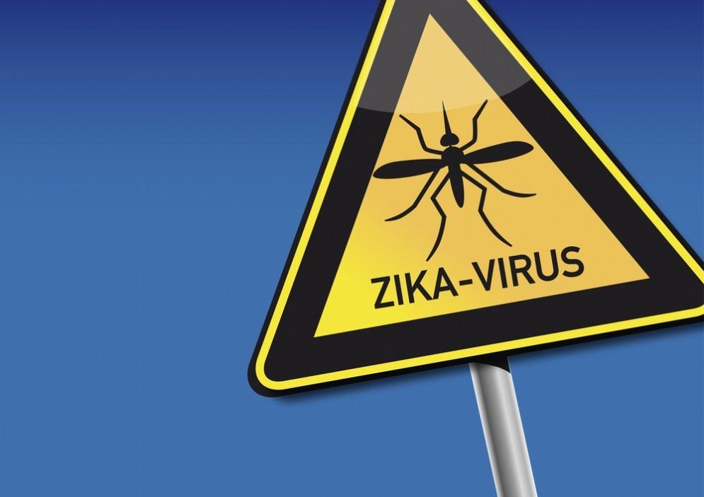 Zika, scoperto un anticorpo che ferma il virus nel corpo