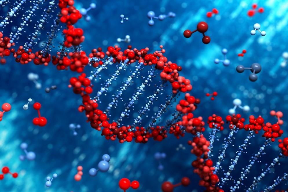 Leucemia mieloide acuta: scoperto un Dna 'alieno'
