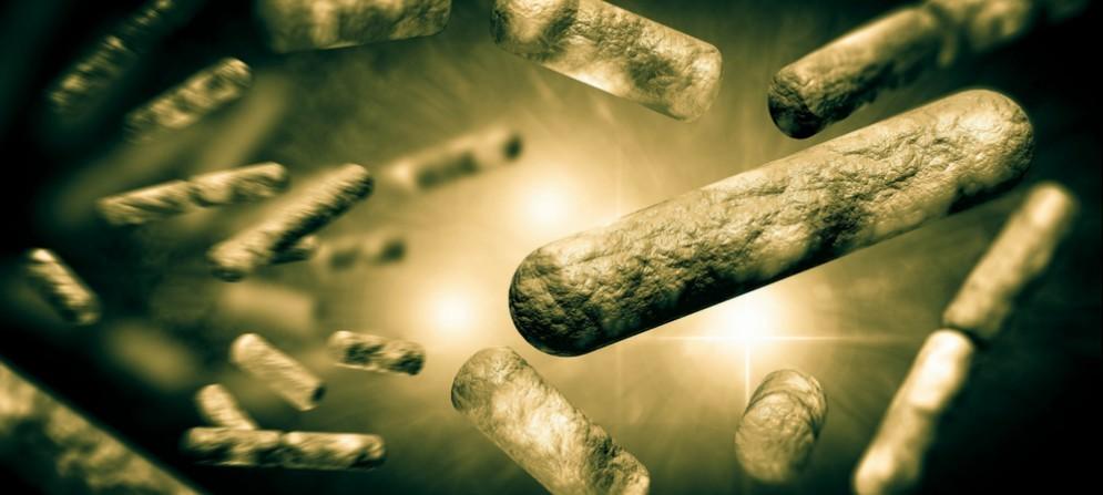 6 casi certificati di Tbc