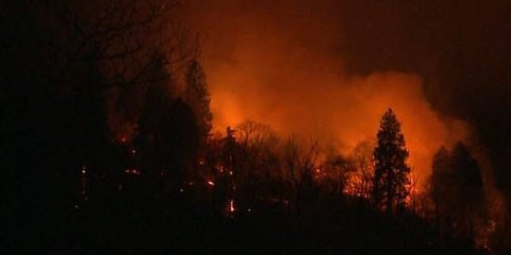 Incendio nei boschi sopra Faedis
