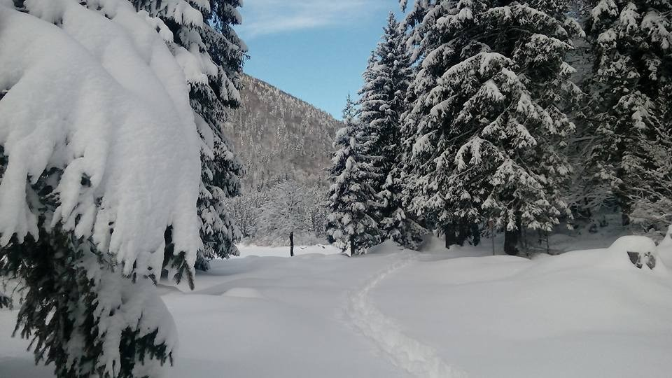 L'area dei laghi di Fusine dopo la nevicata
