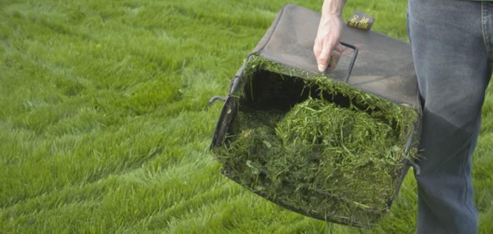 Piace il servizio di raccolta a domicilio del verde
