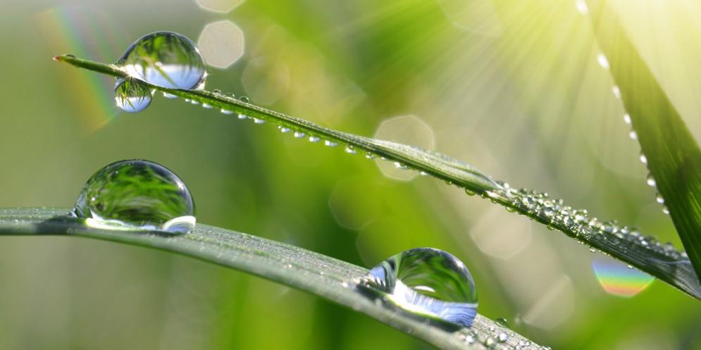 Non c'è acqua da perdere: in occasione della giornata mondiale diversi appuntamenti