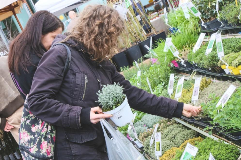 Presentata la 13^ edizione di Pollice Verde a Gorizia