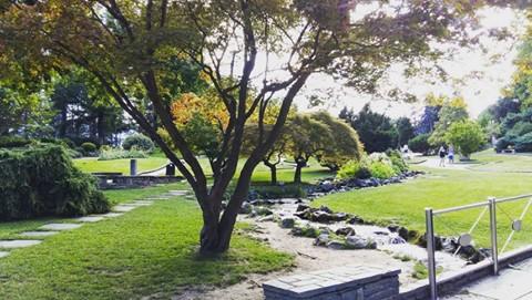 Il Giardino Roccioso, nel cuore del Parco del Valentino