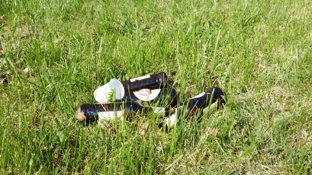 Un tappeto di bottiglie sui prati della Pellerina
