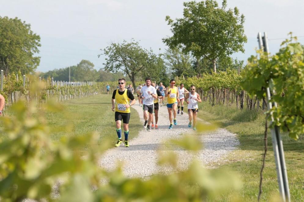 Running tra le vigne e Marcia del Vino registra il record di partecipanti