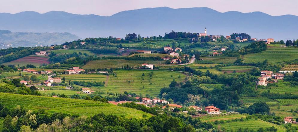 Collio-Brda: il progetto del sito Unesco