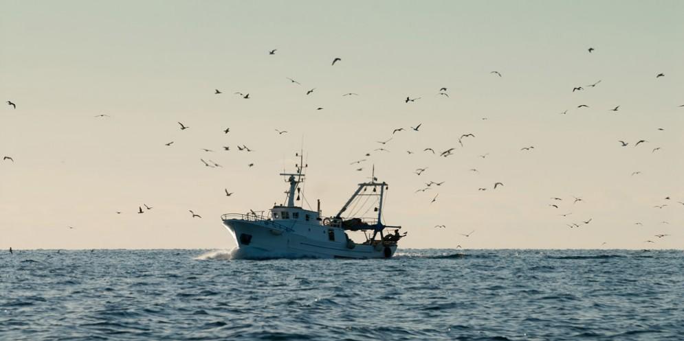 Trovano cadavere impigliato nelle reti da pesca: è giallo sull'identità