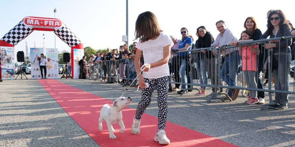 Dog Show nel parco dell'Agristella