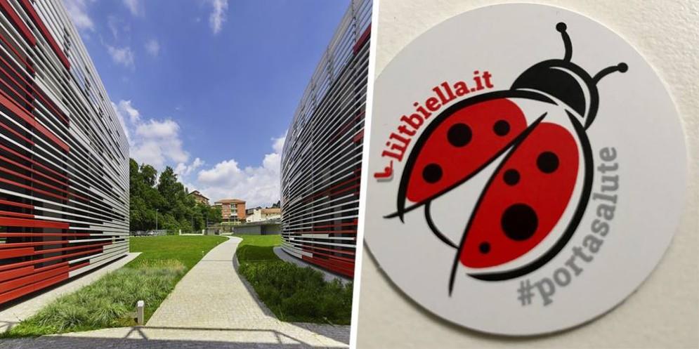 L'adesivo della Coccinella #portasalute è uno dei gadget LILT Biella