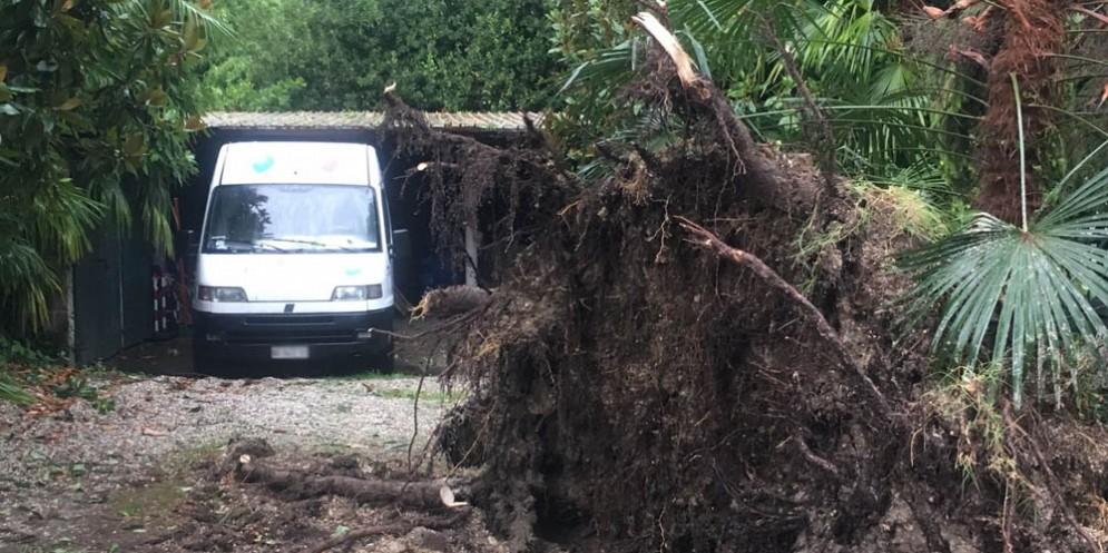 Le prime immagini dell'ondata di maltempo sul Friuli