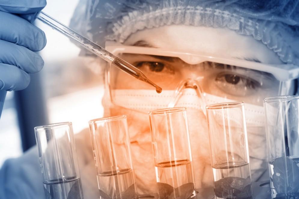 CRISPR per i trapianti di organi da maiali