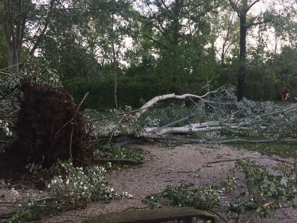 Parco del Cormor devastato dal vento