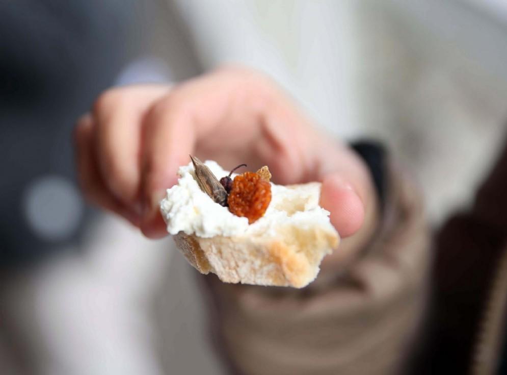 Insetti da mangiare, da oggi in Svizzera sono vendita sugli scaffali Coop