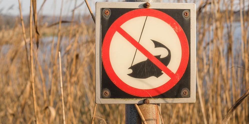 Ignorano il divieto di pesca e si ritrovano in mezzo all'Isonzo