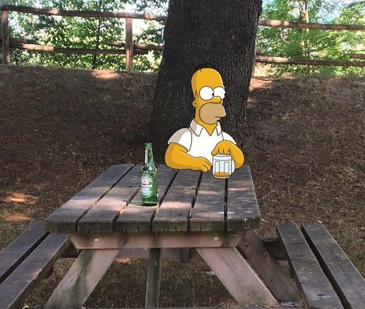 Homer Simpson al parco del Valentino