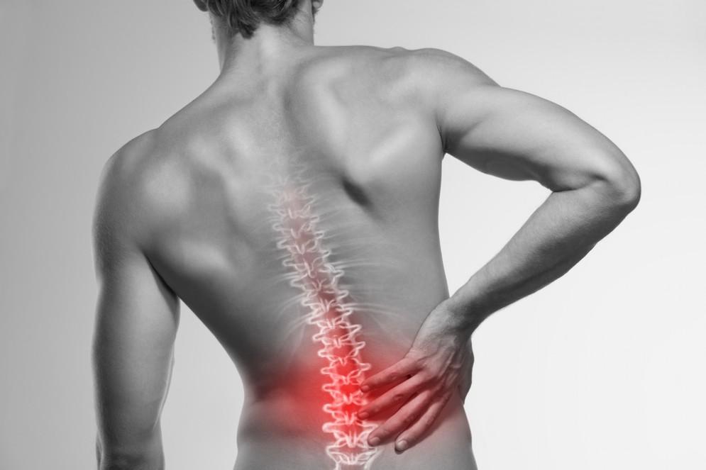 Mal di schiena e recettore della vitamina D