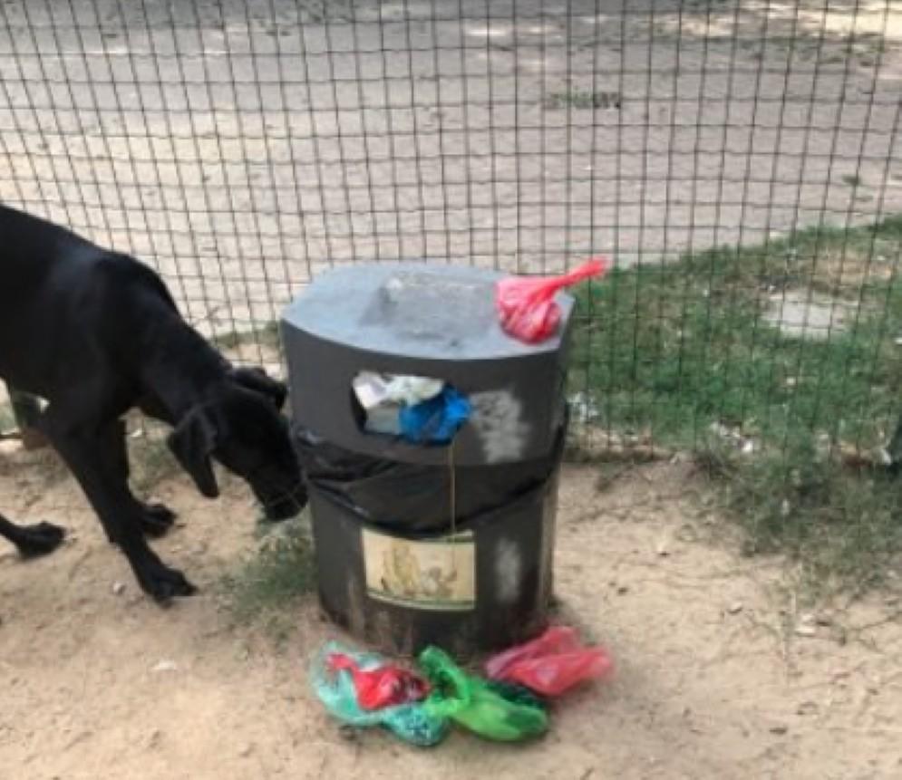 L'area cani di via Lamarmora