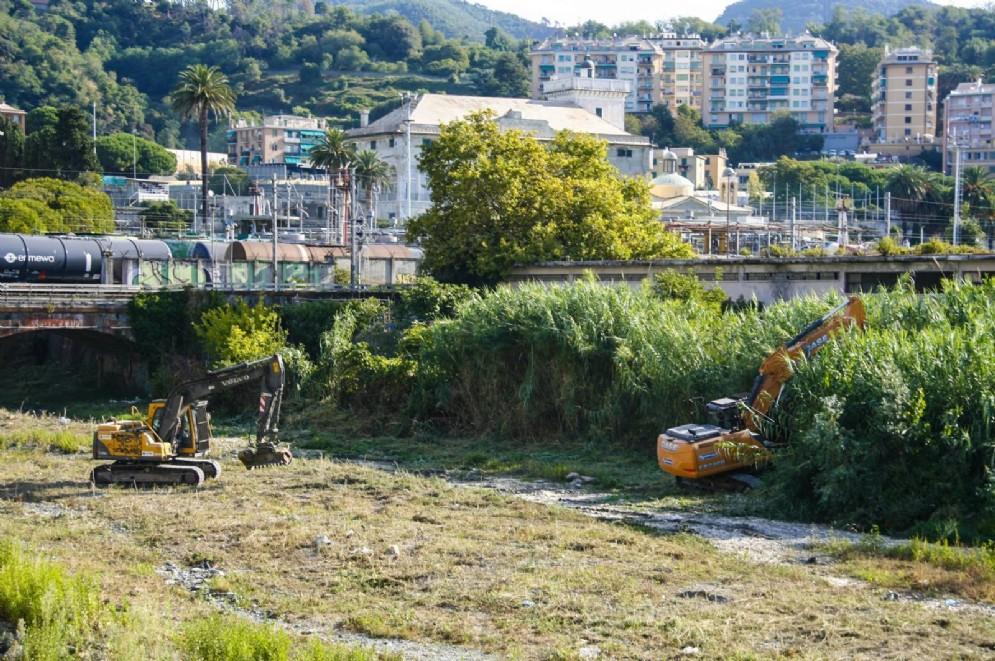 Sgomberato il campo abusivo a Pegli, raccolte 3 tonnellate di rifiuti
