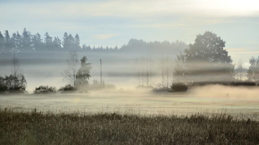 Il progetto made in Italy che crea acqua potabile dalla nebbia (con delle 'trappole')