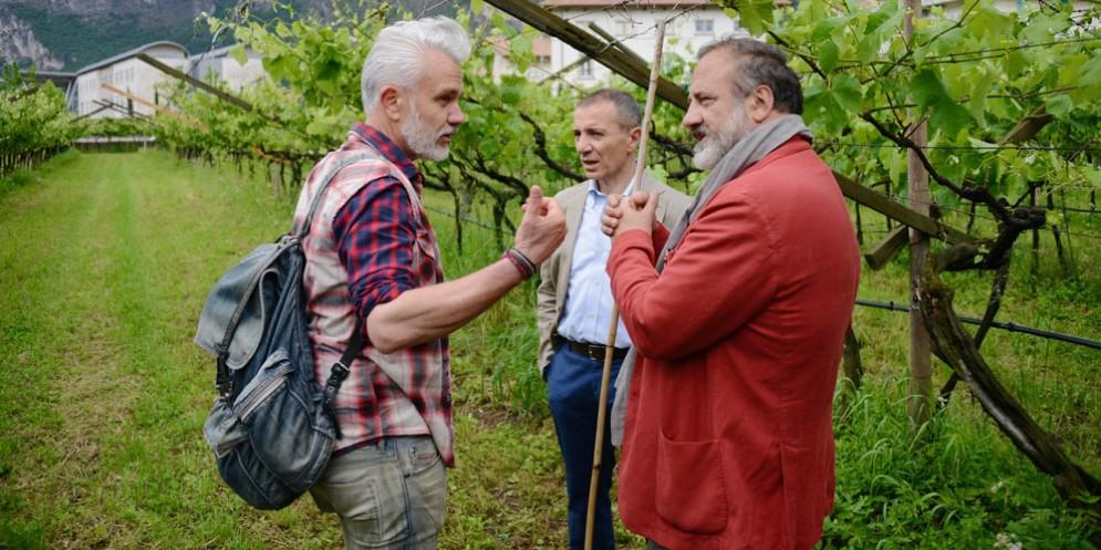 Su Rai2ritorna Marco Simonit con 'Signori del vino'