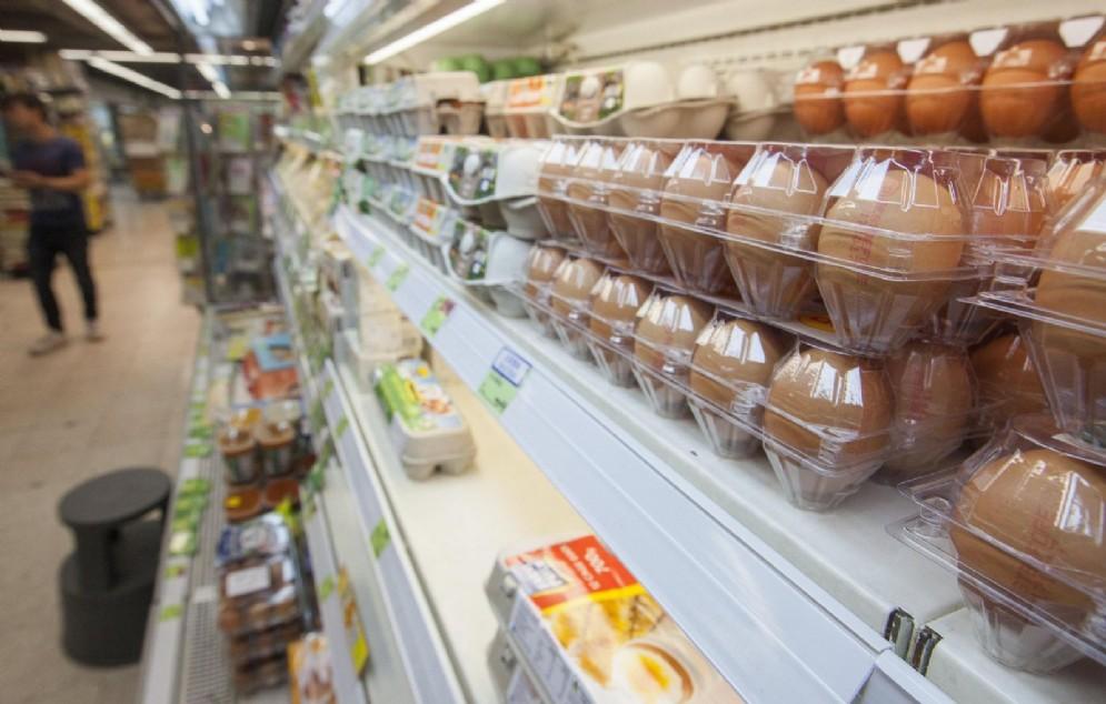 Uova contaminate, 5 casi in Piemonte