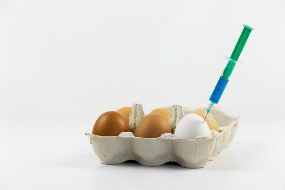Uova al Fipronil accordo con il Ministero della Salute