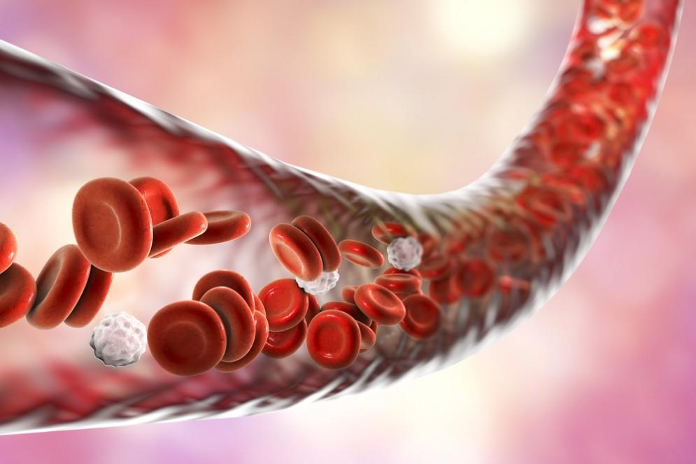 Inibitori di SGLT-2 proteggono i vasi sanguigni