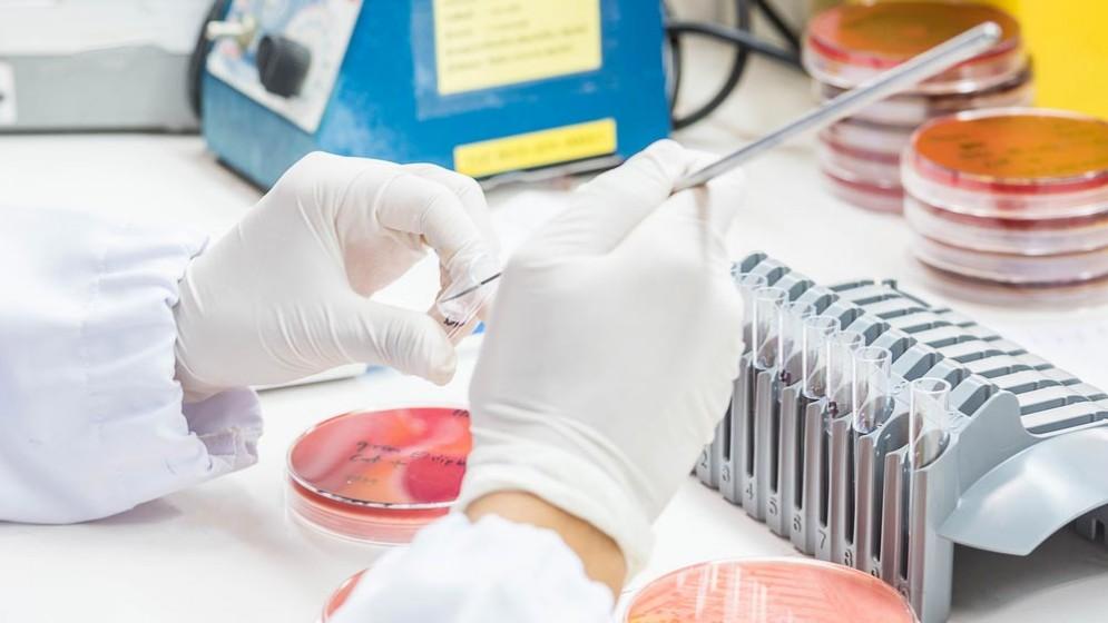 Resistenza batterica agli antibiotici