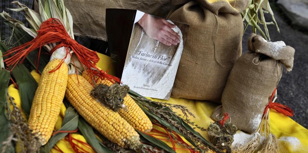 A Sutrio arriva 'Farine di flor': mulini e delizie della Carnia
