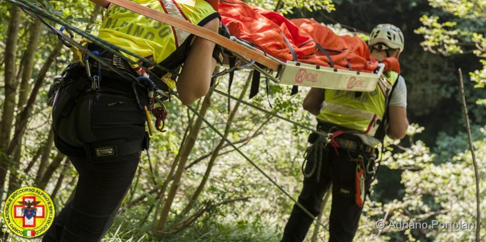 Malore fatale per un tarvisiano: stava tagliando della legna nel bosco