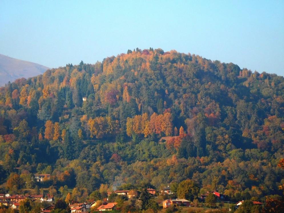 La collina della Burcina vista dal Castellazzo.