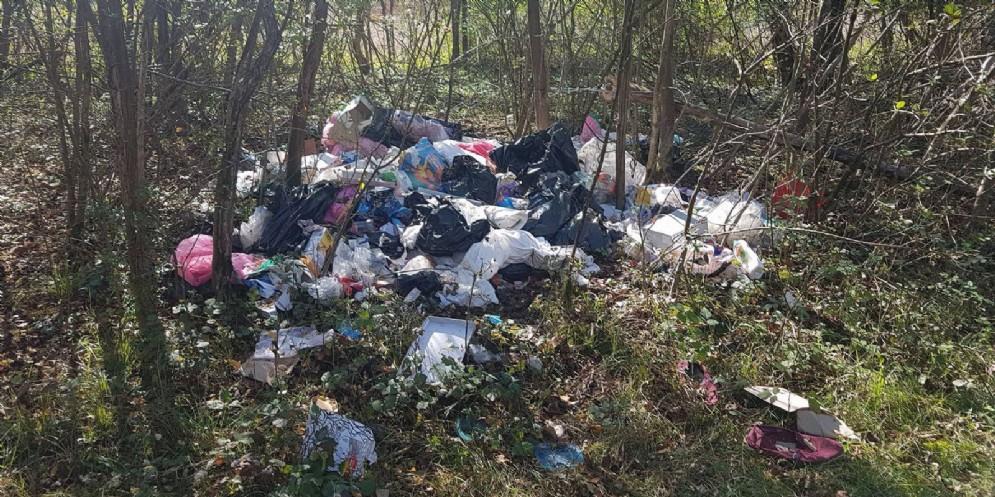 Discarica di rifiuti nelle vicinanze del Tagliamento a Villanova (© Mariangela Burelli)