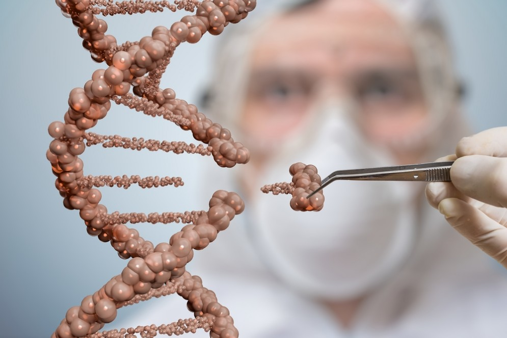 Matita rossa per correggere il DNA