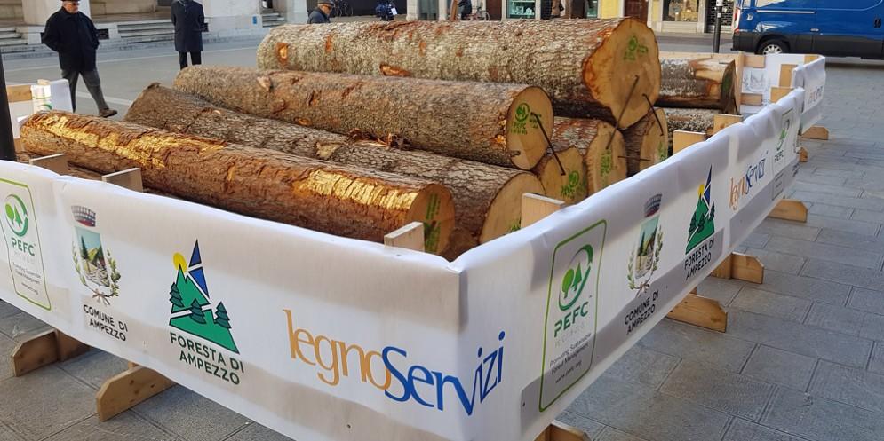 Il bosco arriva in città, nel centro di Udine