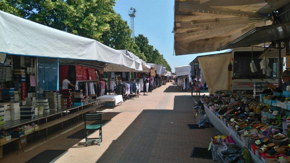Rissa sfiorata al mercato di piazza falcone - Il giardino di piazza falcone ...