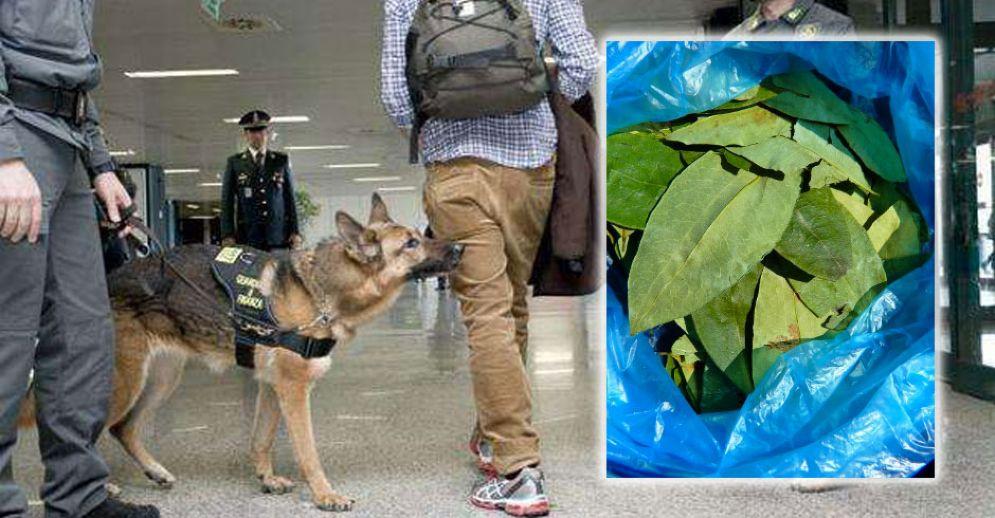 Con ottanta grammi di coca occultati nel bagaglio