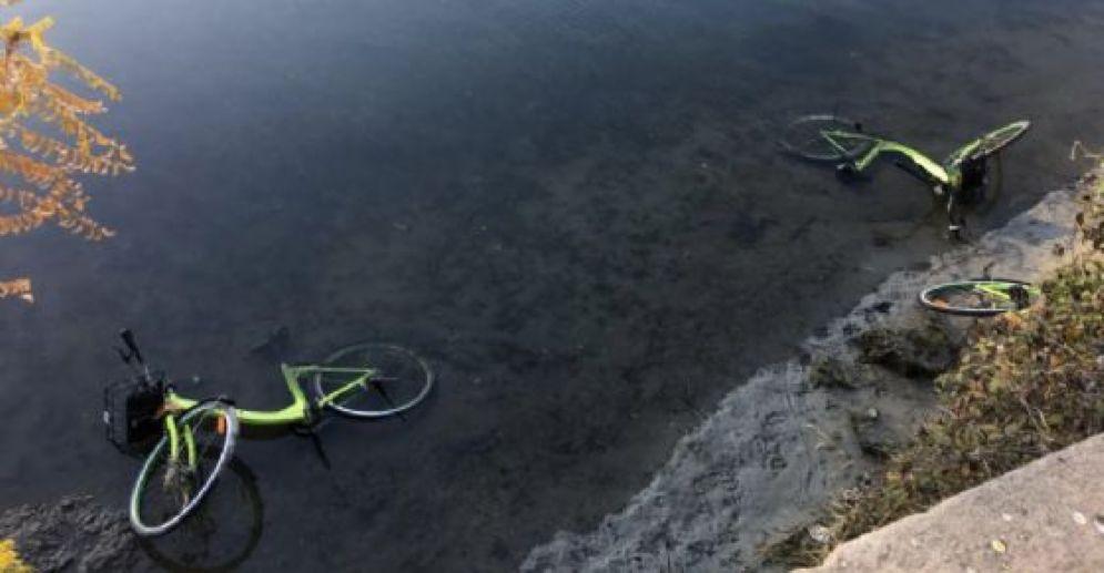 Le bici del bike sharing dentro il fiume Po