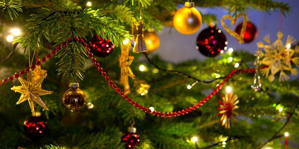 Feste, canti e luci per l'accensione di tanti alberi natalizi in tutta la città