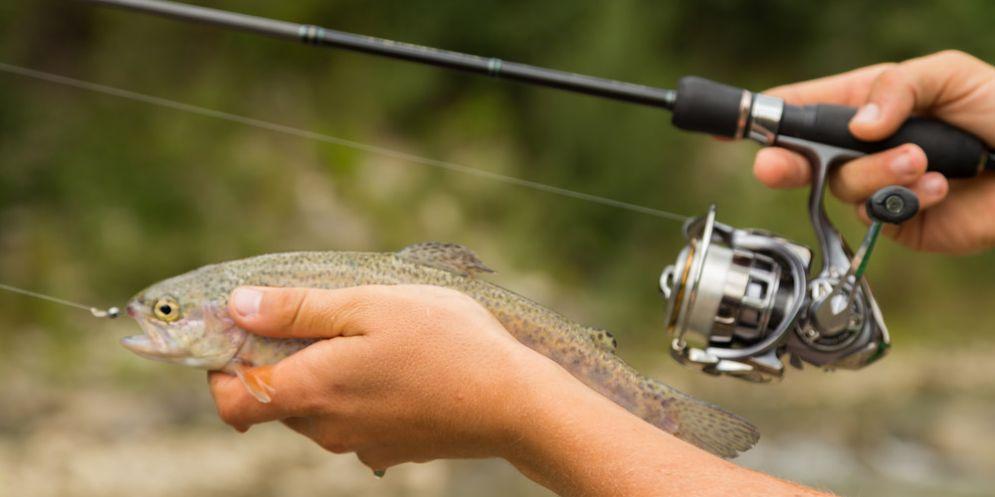 Pesca sportiva: L'ok dalla Giunta al calendario 2018