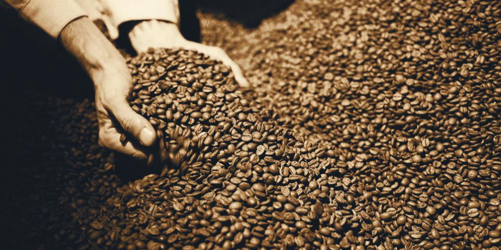 'Aroma e gusto': nuovi appuntamenti targati Cenacolo del caffè