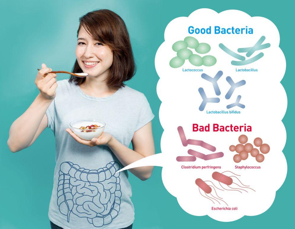 Probiotici e broccoli contro il cancro