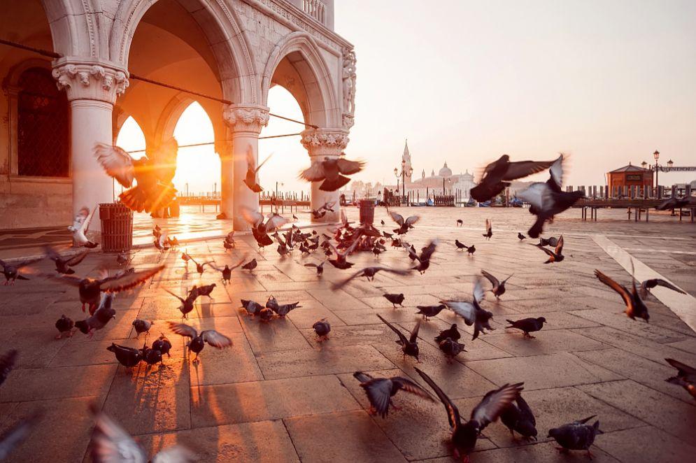 Venezia, ecco cosa fare martedì 23 gennaio