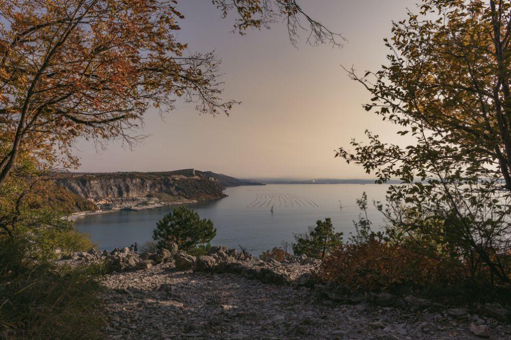 Trieste, 6 cose da fare mercoledì 24 gennaio