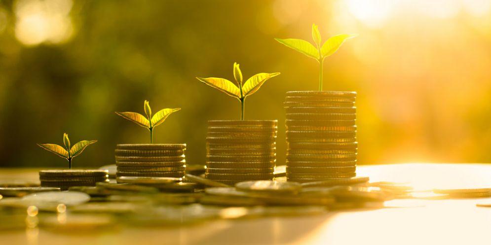 Fvg: avviata una collaborazione per sviluppo green economy
