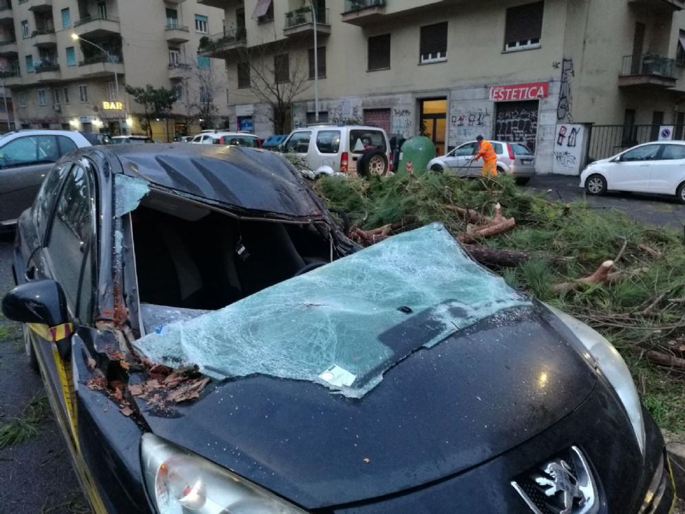 Una delle auto distrutte dalla caduta degli alberi in Viale Tirreno